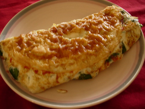 my mother's homemade omelette, #3 | by ixfd64