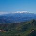Mt Bogong
