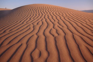 nasty dunes! | by Dene' Miles