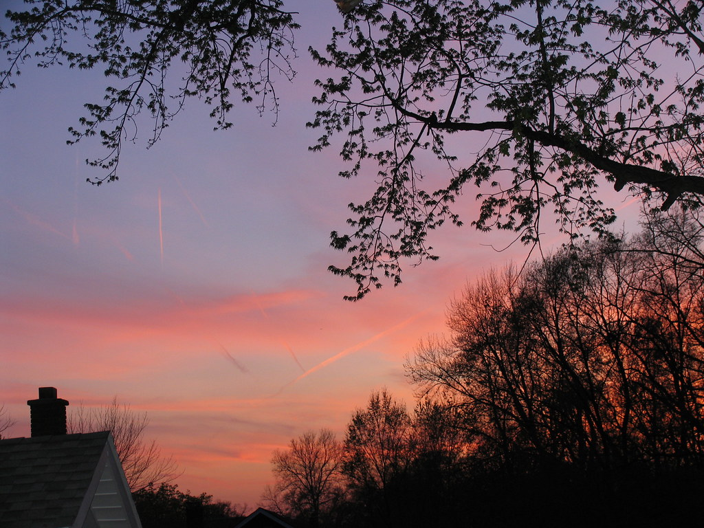 sunset trees pink purple blue house scenic view peaceful t u2026