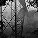The Bridge in Black and White