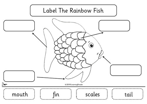 Rainbow Fish Diagram Available Free To Download At My
