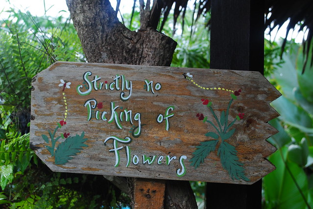 strictly no picking of flowers flickr photo sharing