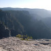 A less noticed view from Taft Point