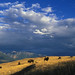 National Bison Range dramatic scenic