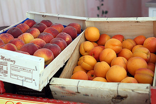 peaches and apricots | by David Lebovitz