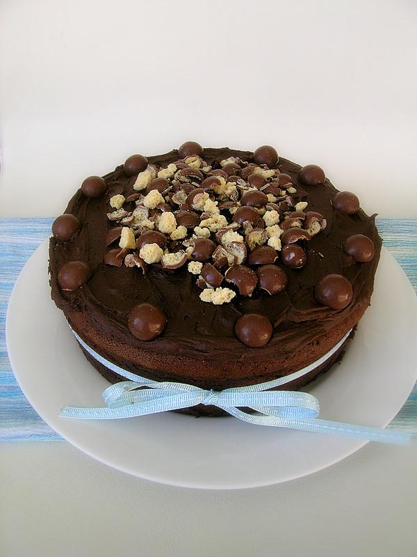 Malteser Birthday Cake Cat Melbourne