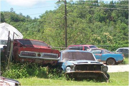 Mustang Abandoned Charger Pontiac Flickr