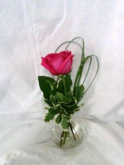 100% free online dating in bud 100% free online dating in rose bud 1,500,000 daily active members.