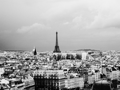 Eiffel from Notre Dame | by Jenk75