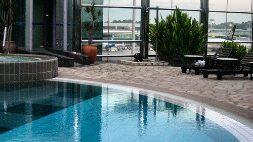 Swimming Pool Travel : Changi airport terminal swimming pool travel
