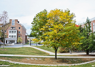 Dartmouth Campus | by Alun K. Wu