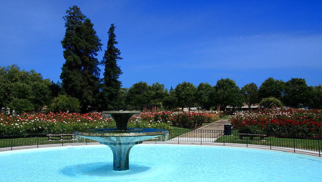 ... San Jose Municipal Rose Garden   By Jmenard48