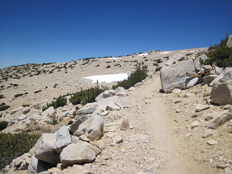 The last stretch of trail. The summit is up ahead, the air is thin, and we're very tired.