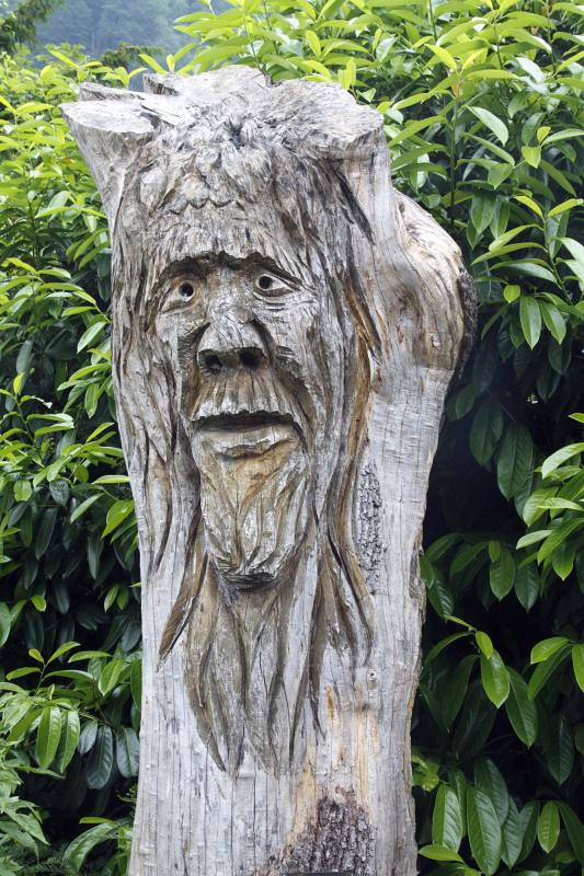 Tree Spirit Wood Carving Doublejeopardy Flickr