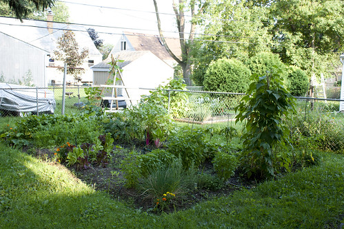 2010 Garden: Week 10 | by jrcraft