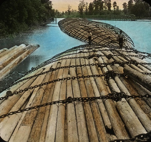 Raft of Logs, Columbia River | by OSU Special Collections & Archives : Commons