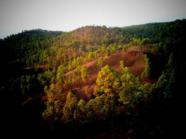 18 Vista desde la Montaña del Cascajo-HTC-Android-Vignette-2010-08-27-20-09-14-764