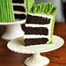 Asparagus Cake Sliced