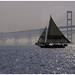 Chesapeake Bay Skipjack Sails near Bay Bridge by Bill Mcallen