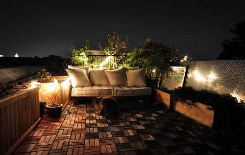 Summer Garden At Night Ly Ly Ly Flickr
