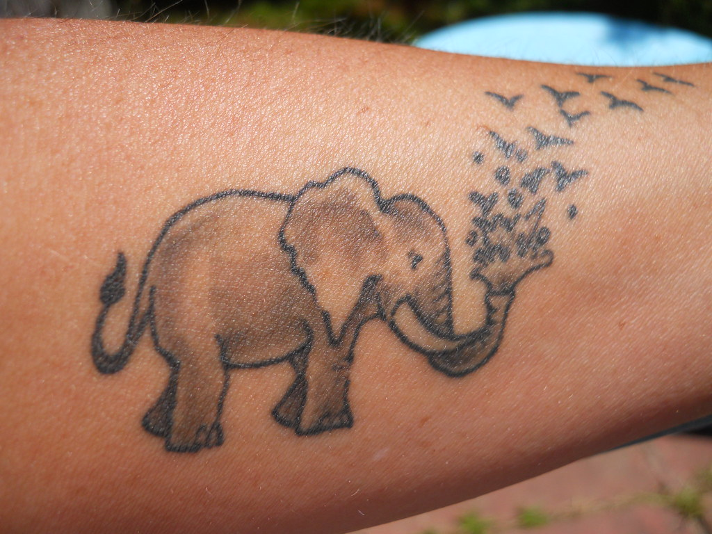 Dscn0348 My Mom S Elephant Tattoo Rio Flickr