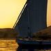 Golden Nile 3