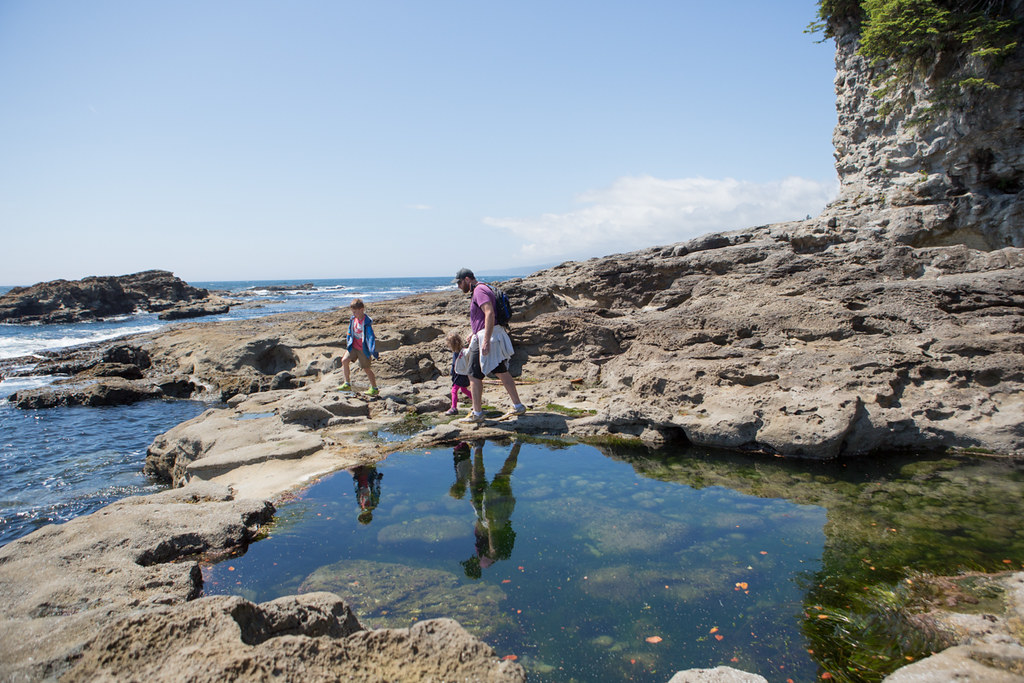 Tide pools at Botanical Beach