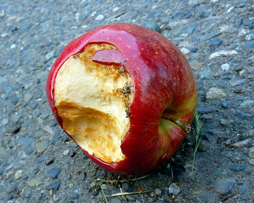 dirty rotten apple 2 | by Lara604