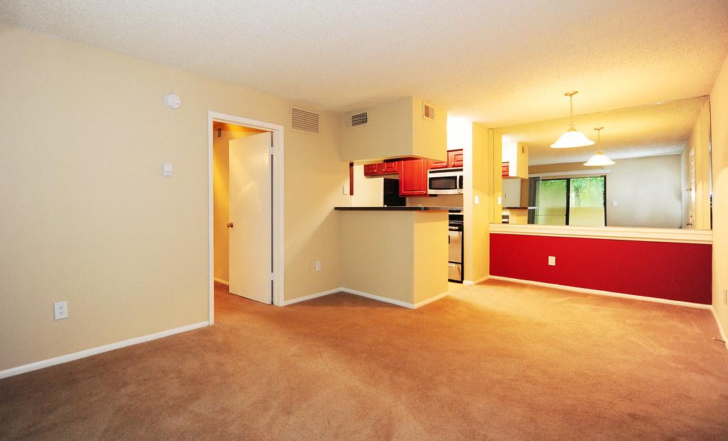 Tampa Fl Apartments Craigslist