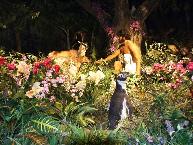 Adam Feeding The Animals In The Garden Of Eden Adam