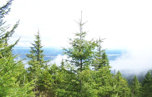 View from Walker Mountain and Hood Canal | by PNPTC