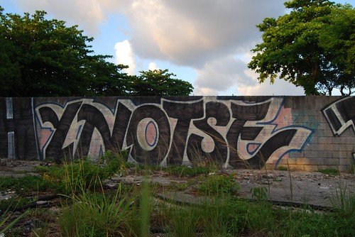 YNOTSE LIVES | by KING YNOT LIVES