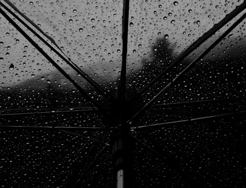 Under my umbrella | by Winter is coming*