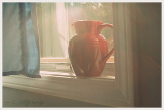 some sun in the pitcher | by Cinco_Mom