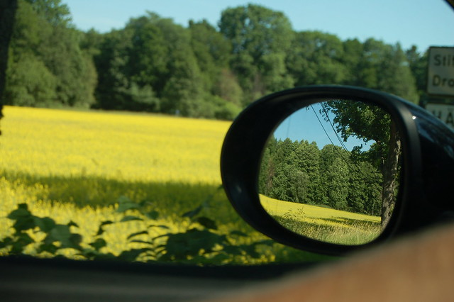 Car view of Sweden rolling by, photo by iHanna