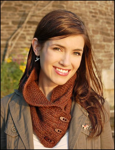 Shawl Collared Cowl 2 framed | by nevernotknitting