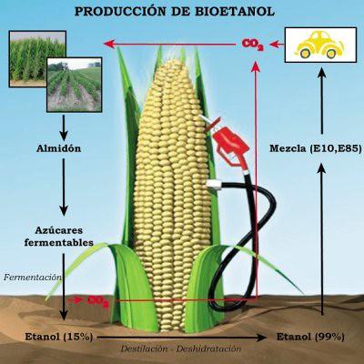 Produccion Bioetanol | Jumanji Solar | Flickr