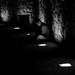 Music in dark