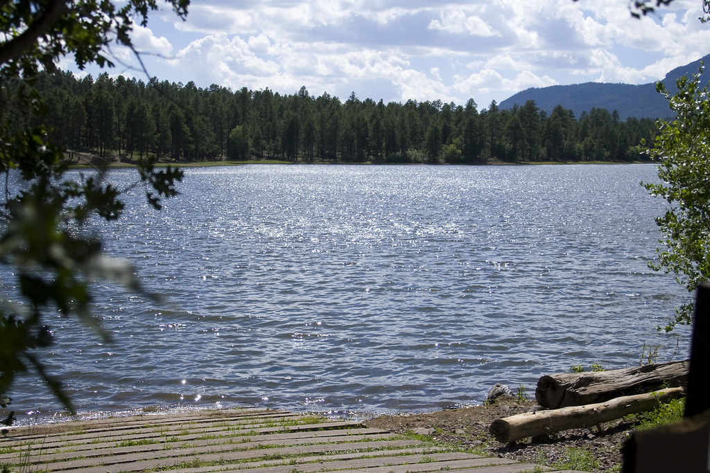Dogtown lake campground williams ranger district for Fishing lakes in arizona
