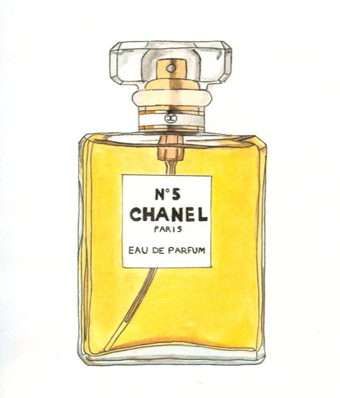 Chanel perfume bottle i used to look amp draw https c1 staticflickr