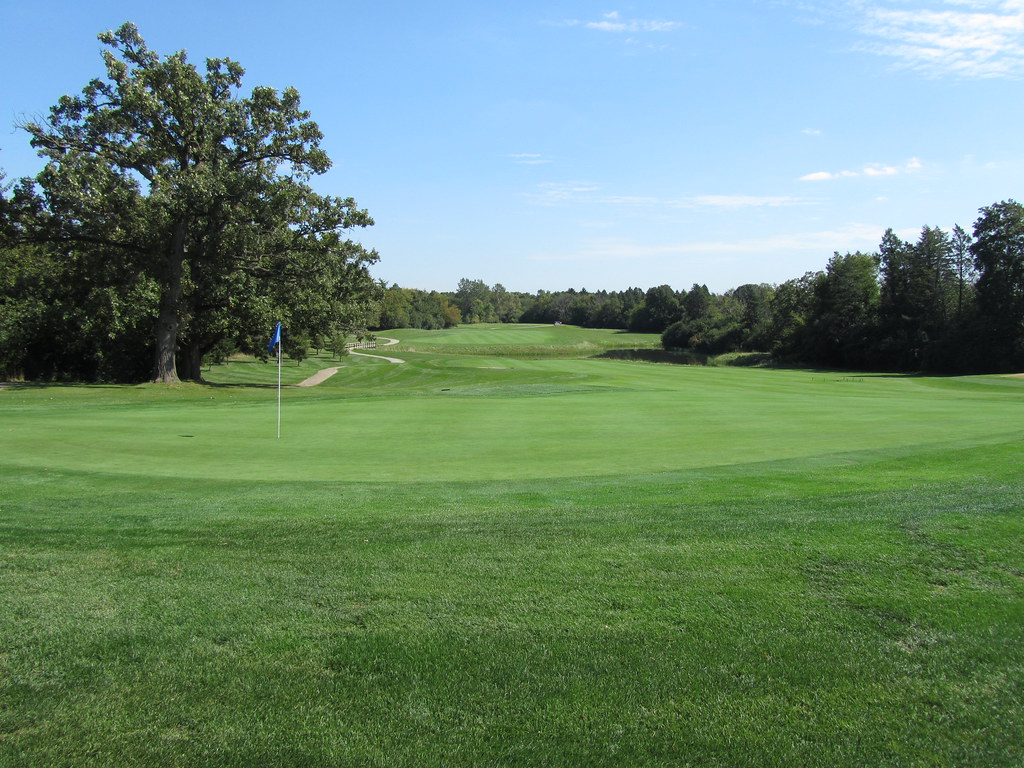 pine meadow online dating View tournament details for jr pga qualifier @ pine meadow gc register for the event find groups, tee times, schedule, course.