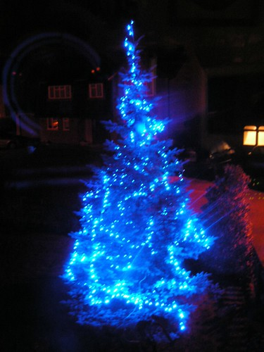 Blue spruce with lights A 20ft Blue Spruce tree with 300 b? Flickr
