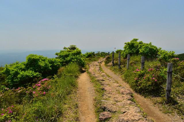 韓国岳・大浪池の周回コース