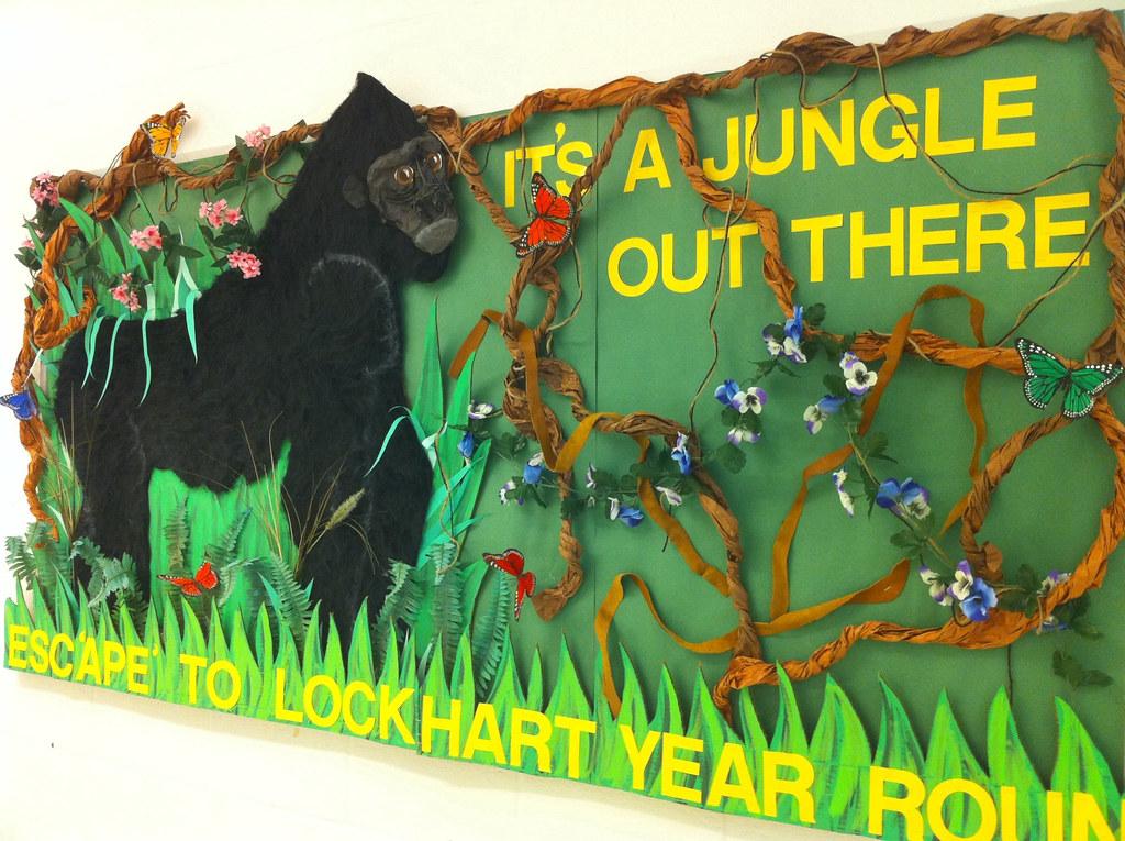 Classroom Decor Borders ~ Jungle bulletin board cool