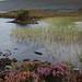 Stac Pollaidh & Loch Lurgainn, Wester Ross. 04/09/10