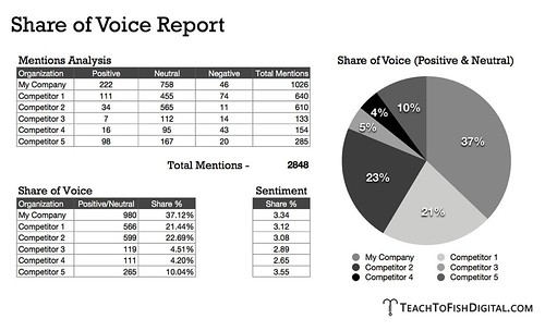 Share of Voice Report | by The Now Revolution