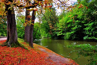 Between summer and Autum (Bois de Vincennes, Paris) | by natureloving