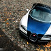 Bugatti Veyron SuperSport with autumn leaves...