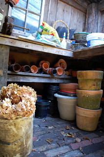 Inside The Potting Shed | by Steenbergs